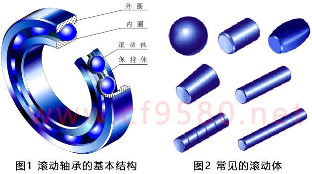 滚动轴承的基本结构图